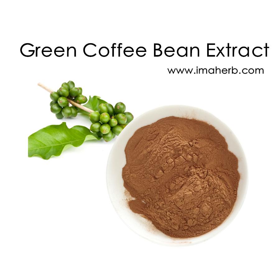 Green Coffee Bean Extract Chlorogenic Acid Powder