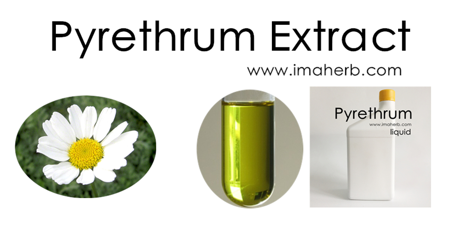 two step extraction of pyrethrins from pyrethrum Pyrethrum flowers are extracted with liquid carbon dioxide in suitable equipment to yield a pale, transparent, concentrated extract of pyrethrins the extract is useful as the active material in safe.