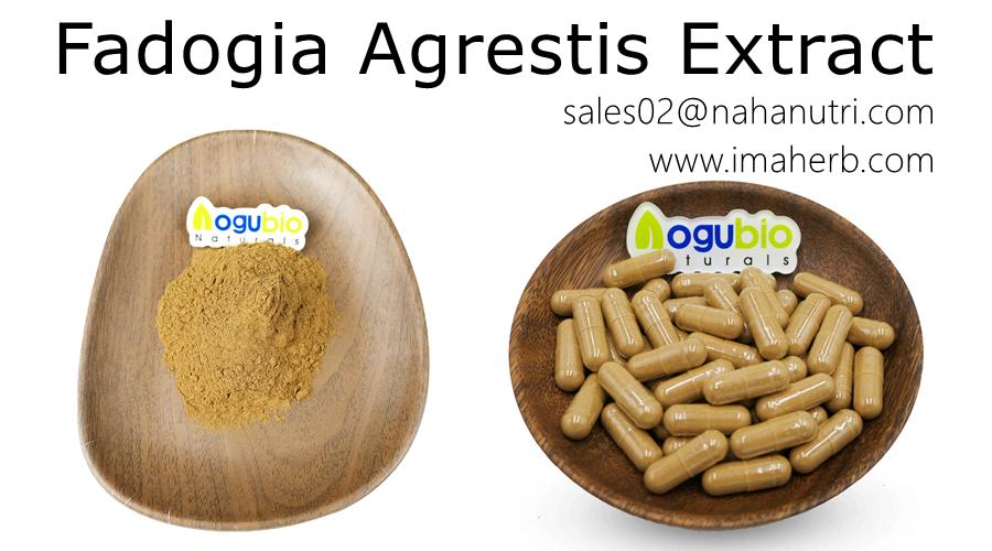 IMAHER OEM Cápsulas Extracto de Fadogia Agrestis P.E. Polvo de extracto de Fadogia Agrestis con etiqueta privada
